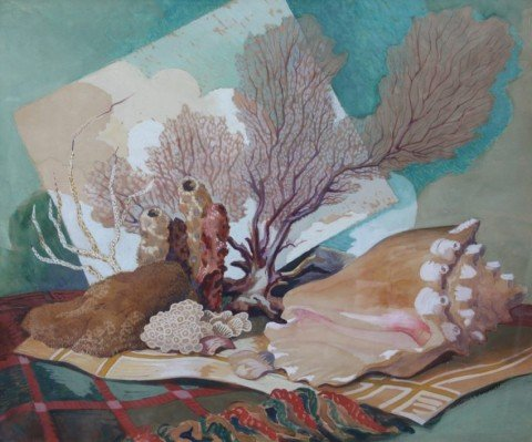 Still Life, Coral and Conch Shell