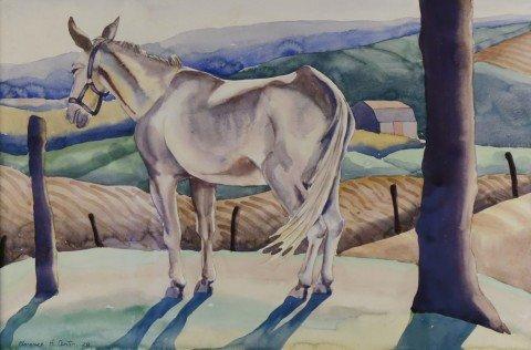 Mule in a Landscape