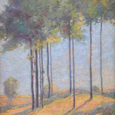 Ernest Zarsky—Sunlit Trees