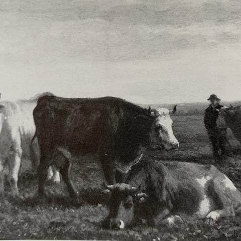 Cows in Field by Rosa Marie Bonheur