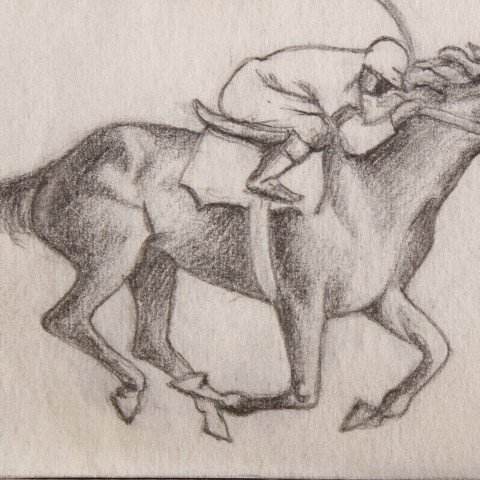 Animal Graphite on Paper Drawing: