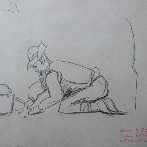 Picking Olives (Anticoli-Corrado) IV