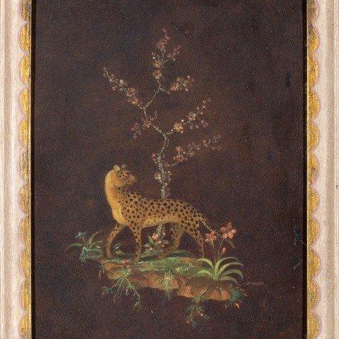 Cosmo deSalvo - Leopard