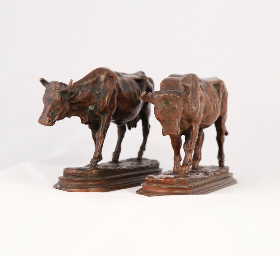 Pair of Bronze Sculptures, Bull and Cow by Auguste Cain