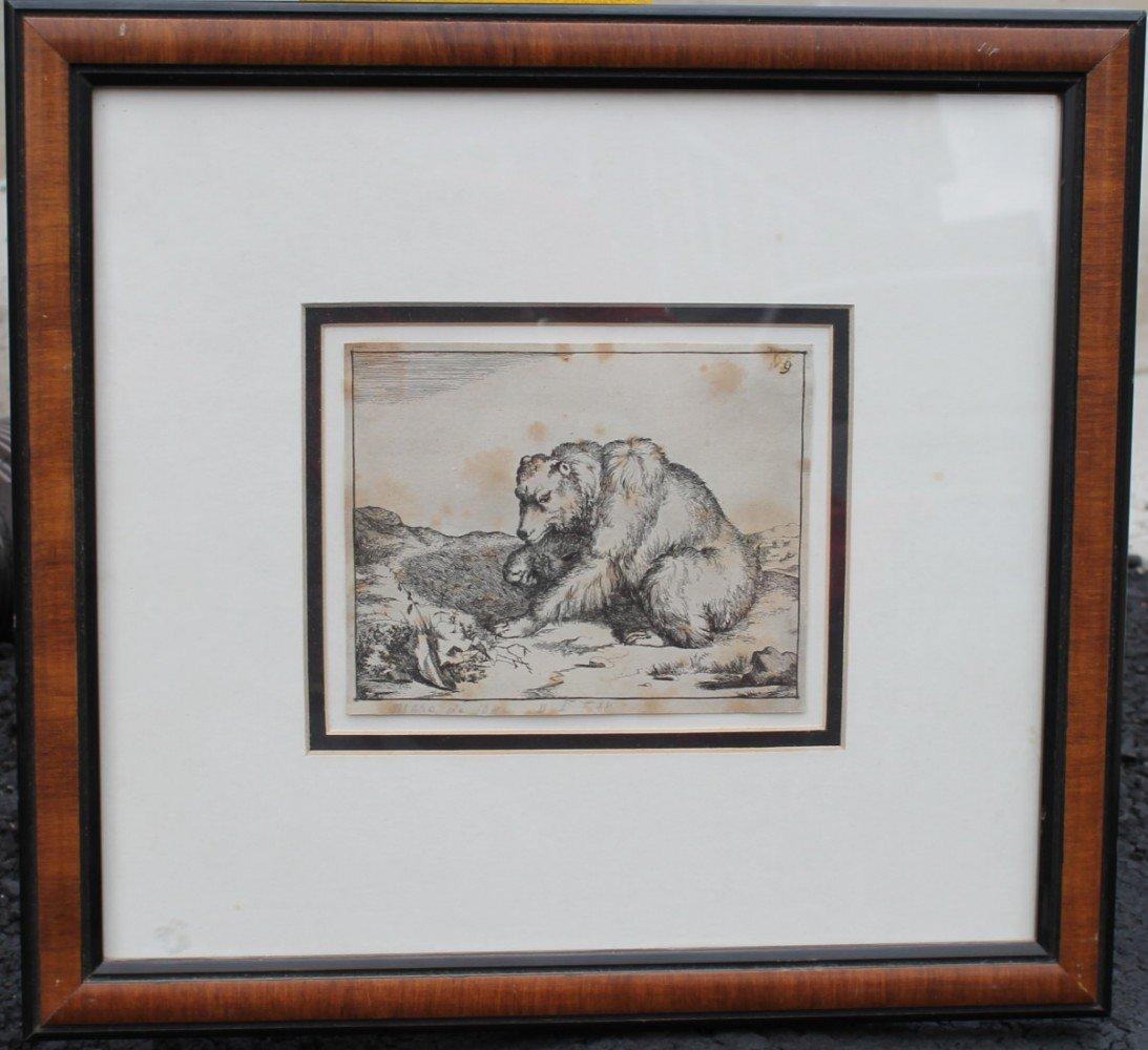Antique Engraving of a Bear