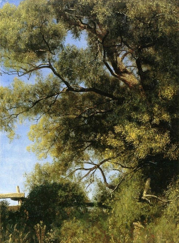 Salem Landscape by Albert Bierstadt