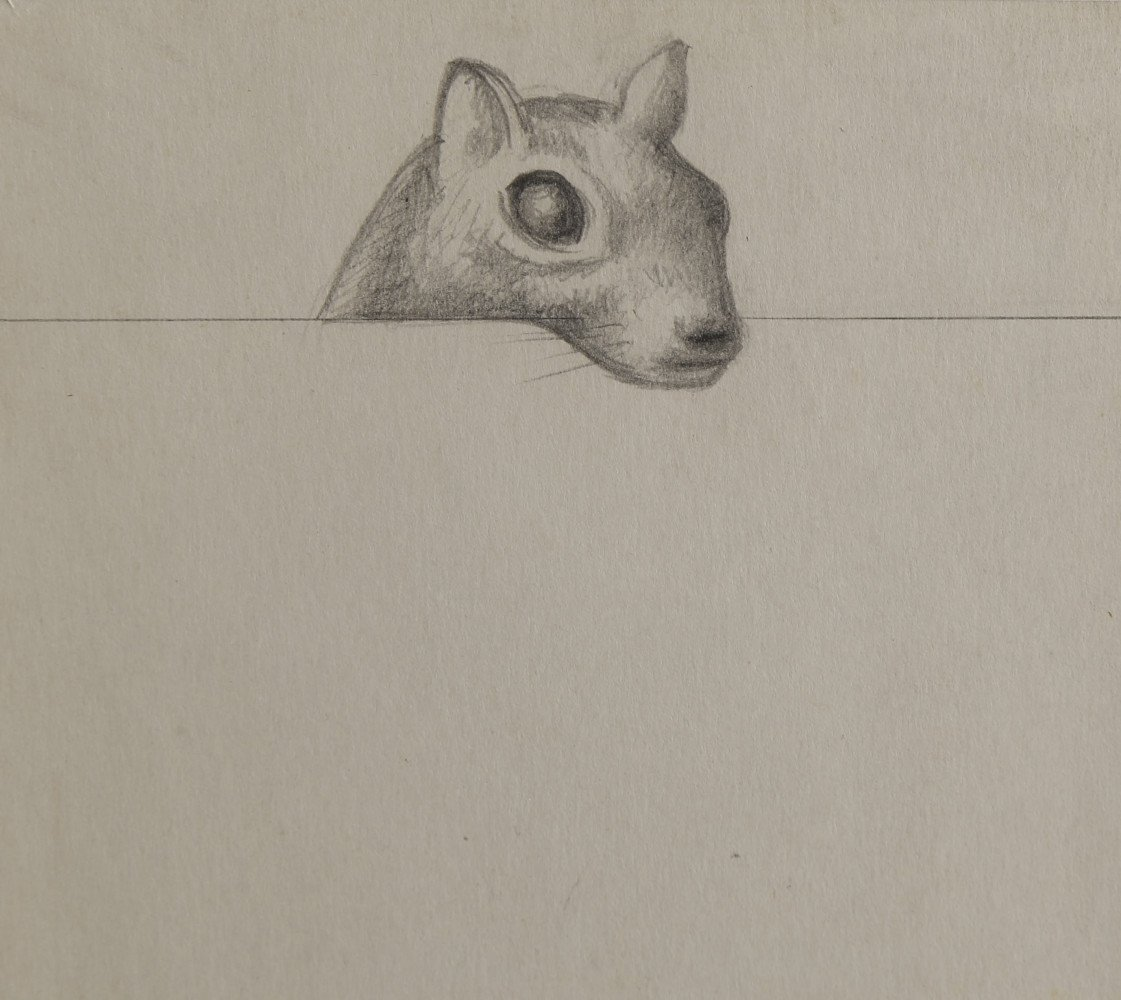 Abstract Animal Graphite on Gray Paper Drawing: