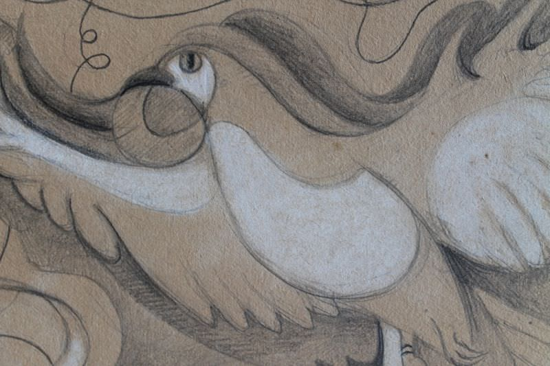 Animal Graphite and White Heightening on Paper Drawing: