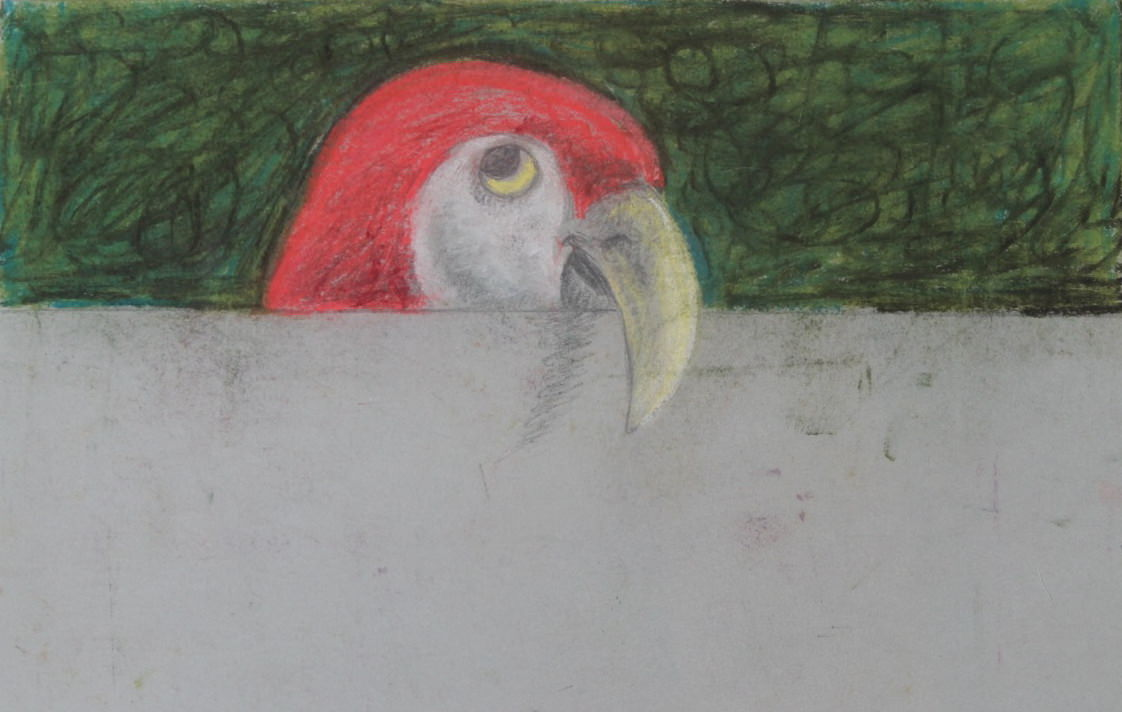 Over and Above: Parrot by Clarence Holbrook Carter