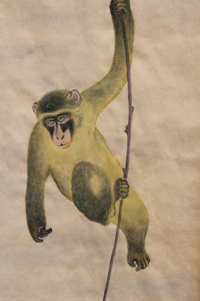 Monkey on a Vine by 20th Century Chinese School