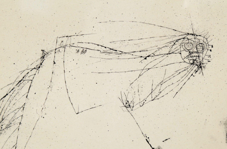 Horse's Head by Joseph Glasco