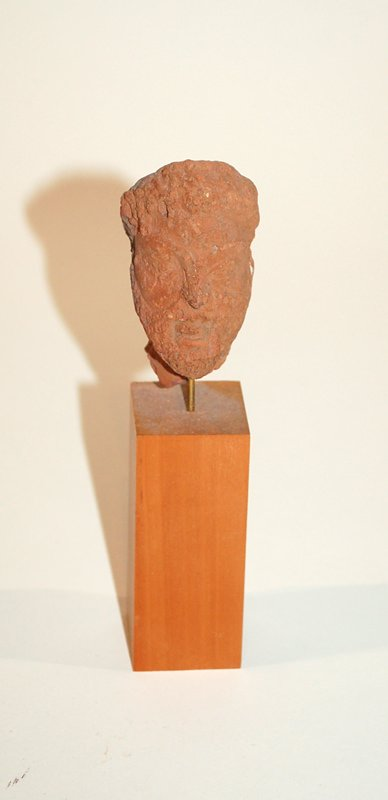 A Greek Terracotta Head