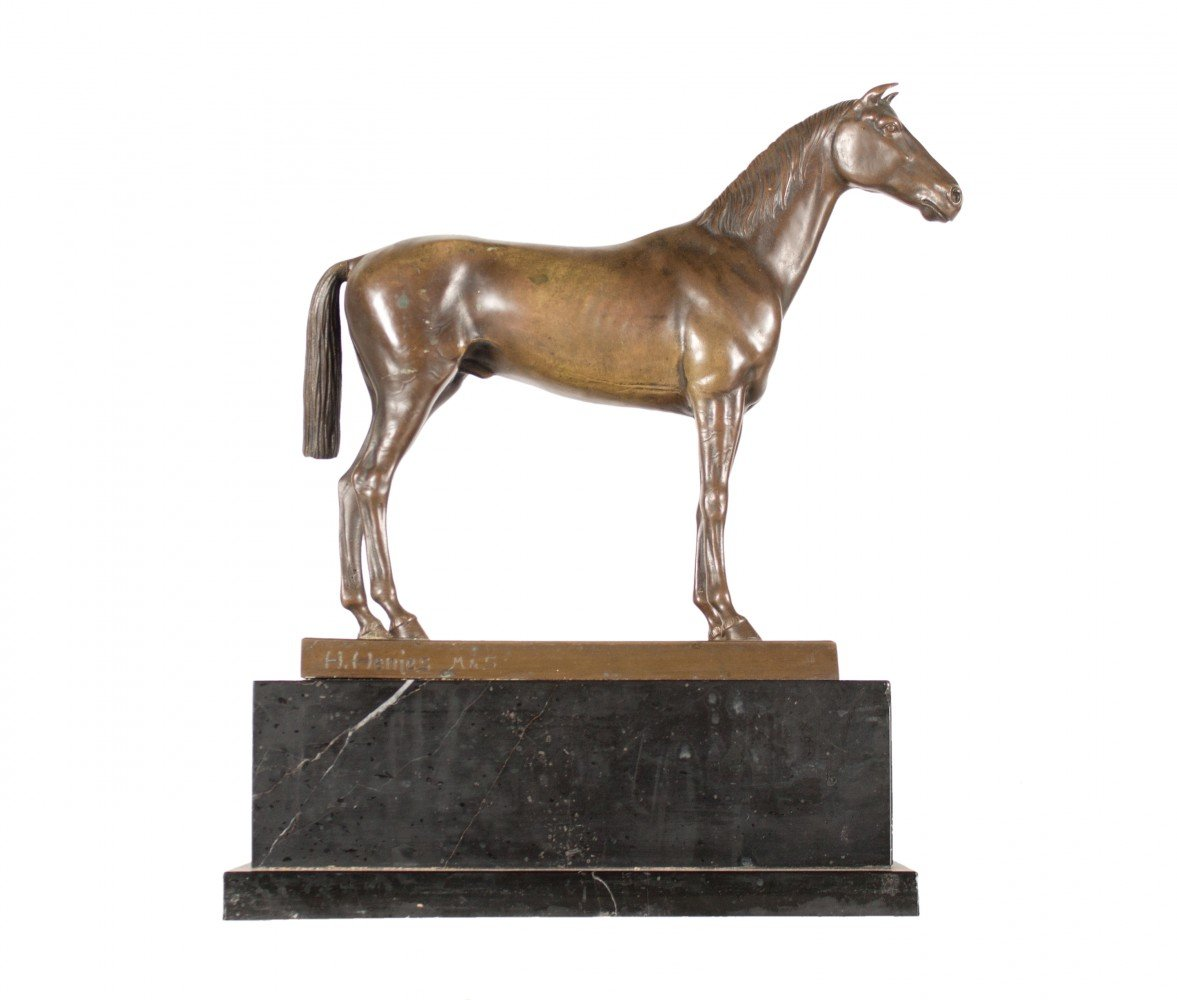 Portrait of a Horse by 19th Century Continental School