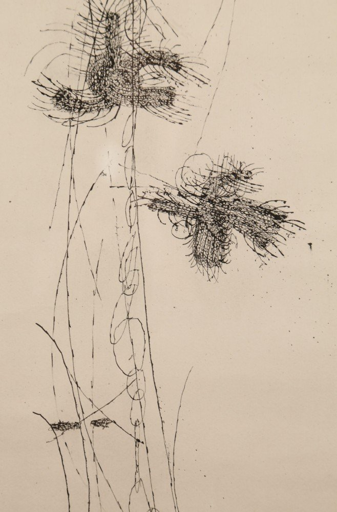 Abstract Ink on Paper Drawing: