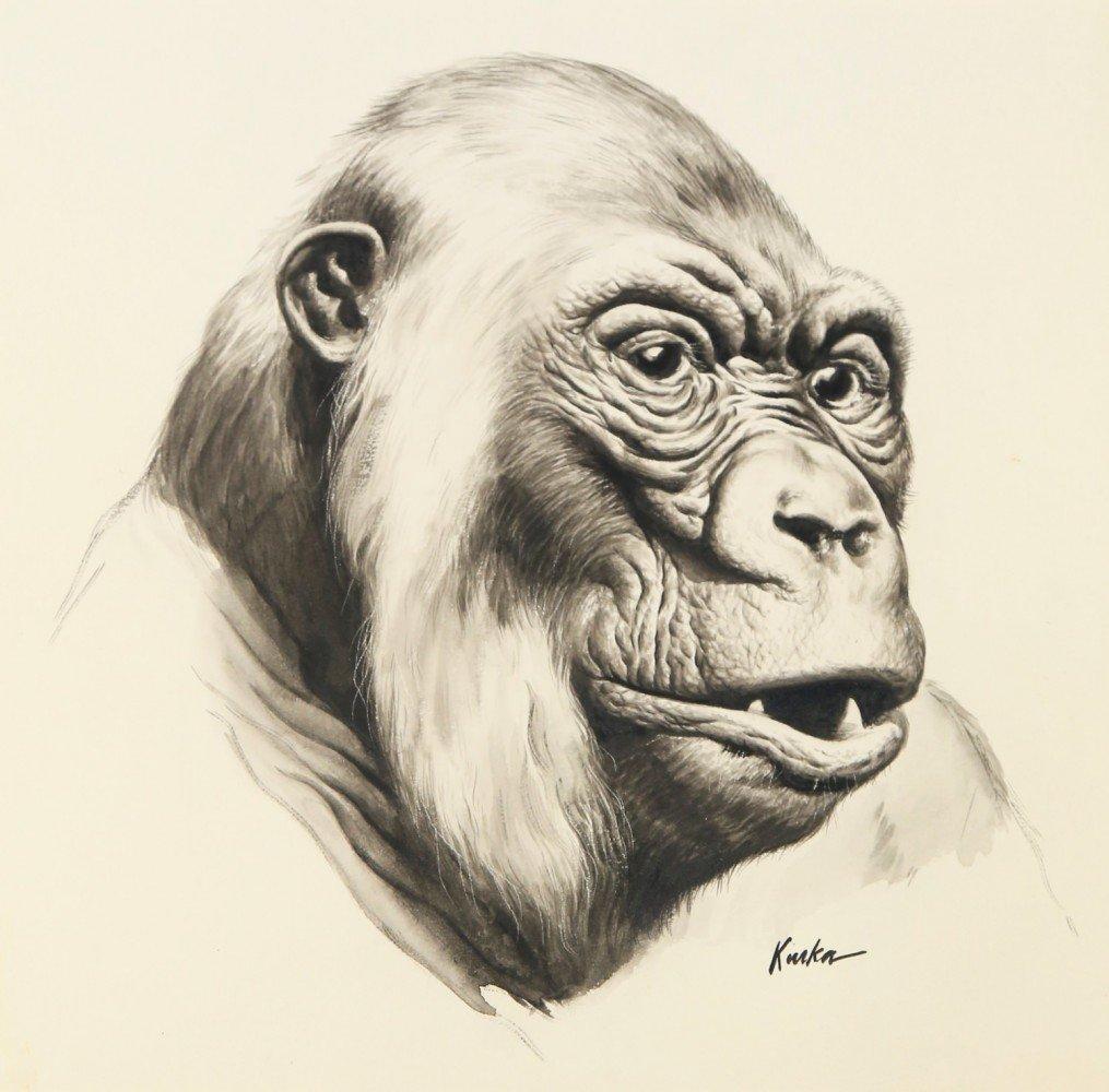 Kiska(American 20thc.) Gorilla