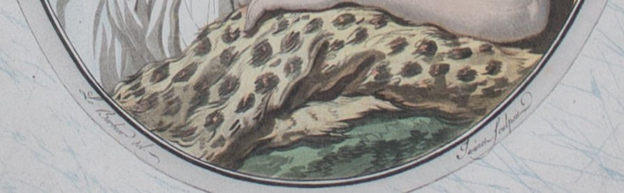 Le Sommeil De Diane by 19th Century French School