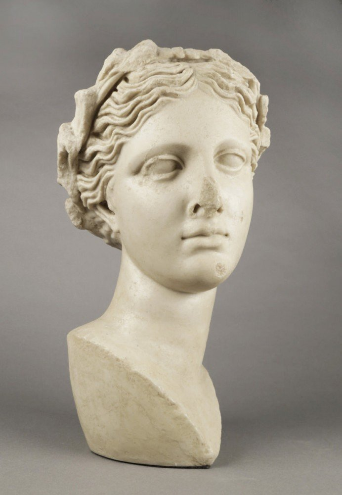 A Modern Plaster Head of Aphrodite