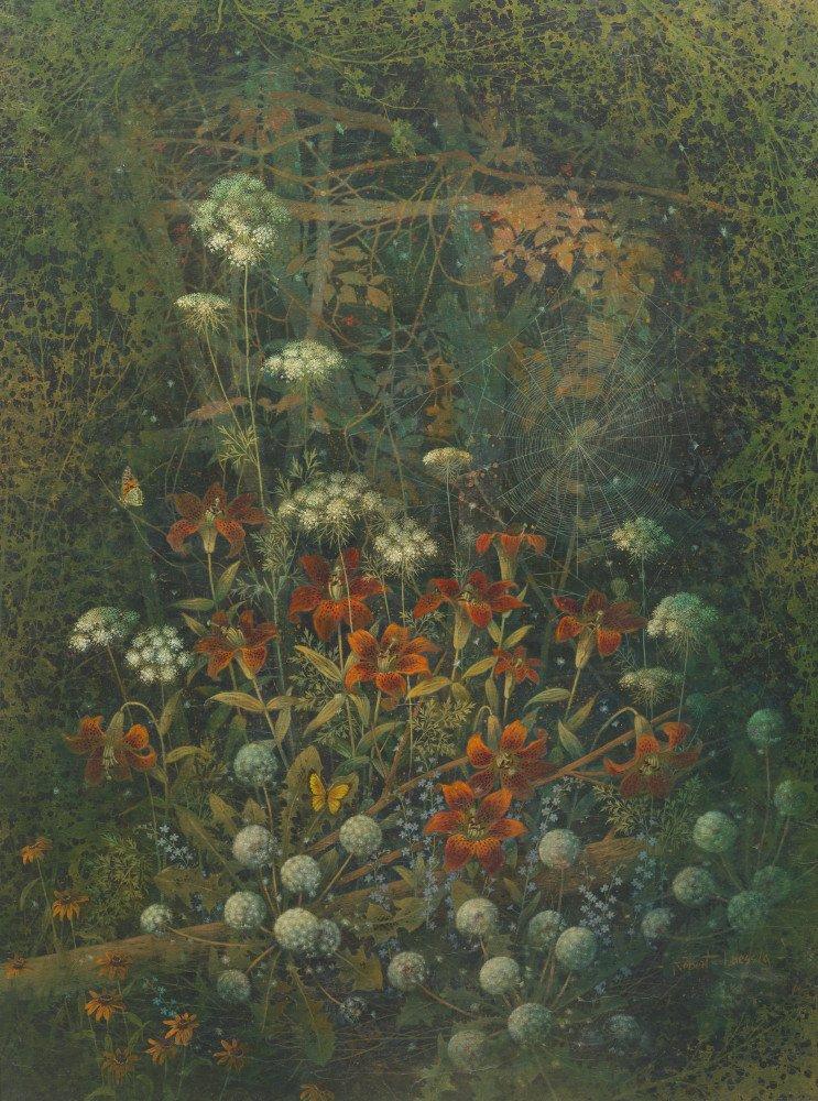 Spider Web by Robert H. Laessig