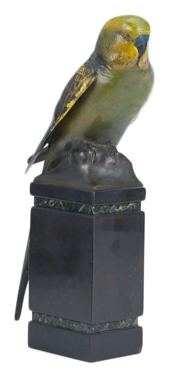 Parakeet by Sigismund Wernekinck