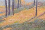 Sunlit Trees by Ernest Zarsky