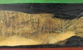 Fish by Cherif