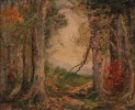Forest in Autumn by May Ames